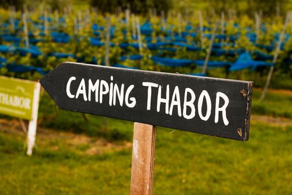 Camping Thaborhoeve Sneek