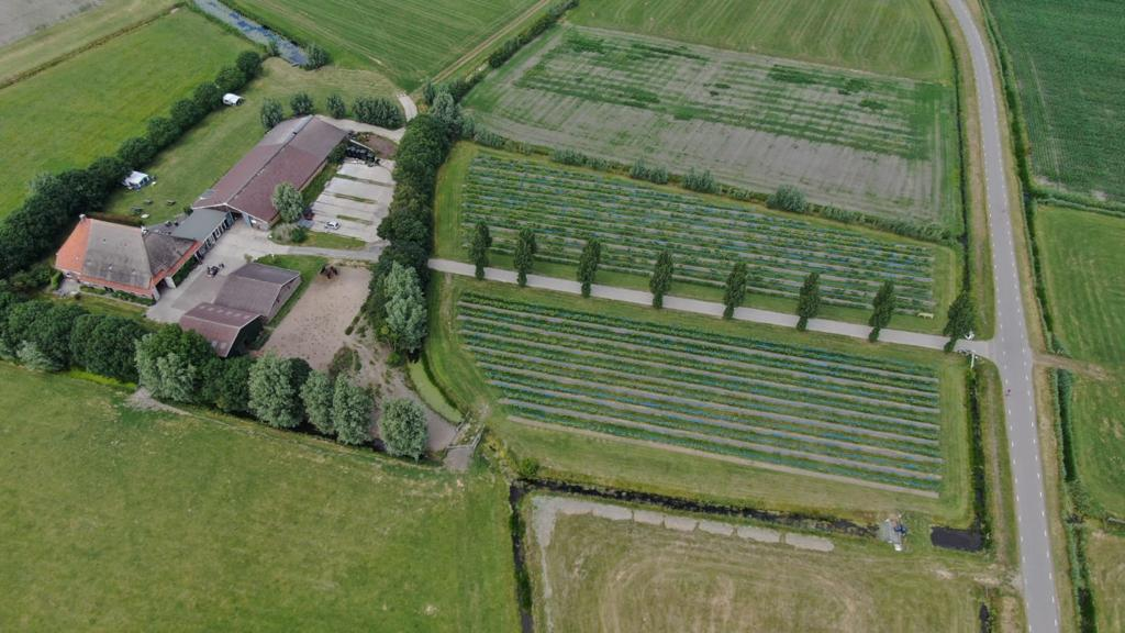 luchtfoto thaborhoeve